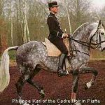 Common Horse Riding Errors